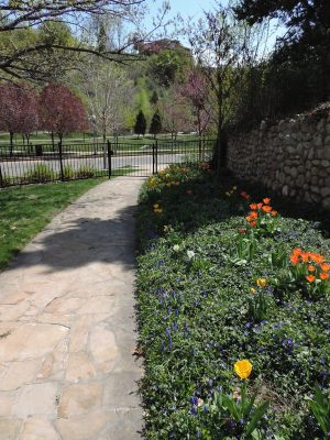 South Lawn path leading to park